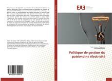 Copertina di Politique de gestion du patrimoine électricité