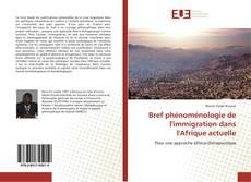 Bref phénoménologie de l'immigration dans l'Afrique actuelle kitap kapağı