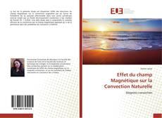 Effet du champ Magnétique sur la Convection Naturelle kitap kapağı