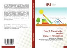 Froid & Climatisation Solaire: Enjeux et Perspectives kitap kapağı