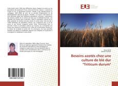 """Capa do livro de Besoins azotés chez une culture de blé dur """"Triticum durum"""""""