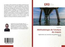 Capa do livro de Méthodologie de l'analyse de risques