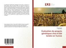 Portada del libro de Évaluation du progrès génétiques chez le blé tendre en Tunisie