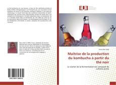 Обложка Maîtrise de la production du kombucha à partir du thé noir