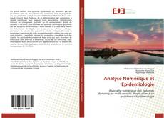 Bookcover of Analyse Numérique et Epidémiologie