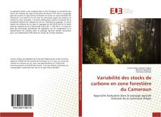 Bookcover of Variabilité des stocks de carbone en zone forestière du Cameroun