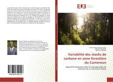 Couverture de Variabilité des stocks de carbone en zone forestière du Cameroun