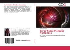 Buchcover von Curso Sobre Métodos Numéricos