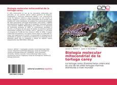 Bookcover of Biología molecular mitocondrial de la tortuga carey