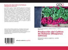 Bookcover of Producción del Cultivo de Rabano (Rhapanus sativus)