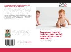 Bookcover of Programa para el fortalecimiento del suelo pélvico en el postparto