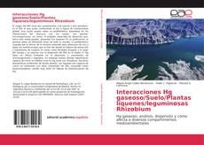 Buchcover von Interacciones Hg gaseoso/Suelo/Plantas líquenes/leguminosas Rhizobium