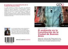 El ambiente en la Constitución de la Ciudad de Buenos Aires kitap kapağı
