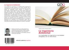 La Ingeniería Ambiental的封面