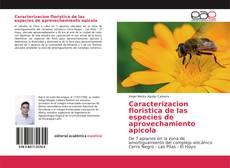 Borítókép a  Caracterizacion floristica de las especies de aprovechamiento apicola - hoz