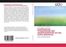 Confluencia. Tratamiento del medioambiente en las artes plásticas的封面