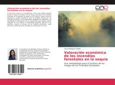 Capa do livro de Valoración económica de los incendios forestales en la sequía