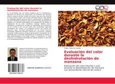 Couverture de Evaluación del color durante la deshidratación de manzana