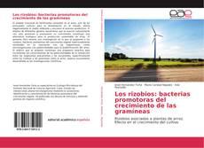 Copertina di Los rizobios: bacterias promotoras del crecimiento de las gramíneas