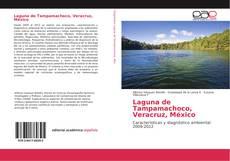 Couverture de Laguna de Tampamachoco, Veracruz, México