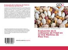 Evaluación de 6 cultivares de Fríjol en la CCS Mártires de Pino Tres