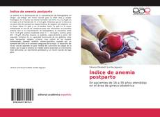 Bookcover of Índice de anemia postparto