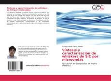 Síntesis y caracterización de whiskers de SiC por microondas的封面