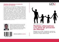 Bookcover of Medidas alternativas a la pena de privación de libertad