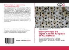 Borítókép a  Biotecnología de cepas nativas fúngicas en Guatemala - hoz