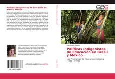 Políticas Indigenistas de Educación en Brasil y México的封面