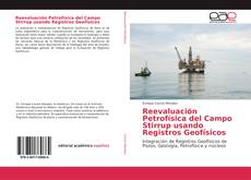 Обложка Reevaluación Petrofísica del Campo Stirrup usando Registros Geofísicos