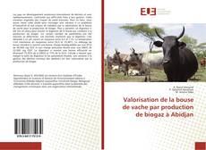 Couverture de Valorisation de la bouse de vache par production de biogaz à Abidjan
