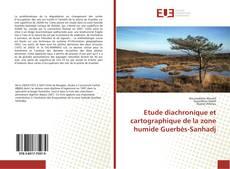 Capa do livro de Etude diachronique et cartographique de la zone humide Guerbès-Sanhadj