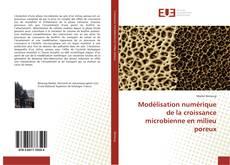 Bookcover of Modélisation numérique de la croissance microbienne en milieu poreux