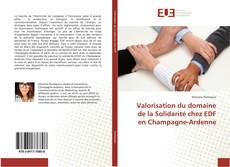Couverture de Valorisation du domaine de la Solidarité chez EDF en Champagne-Ardenne