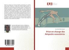 Bookcover of Prise en charge des Amputés vasculaires