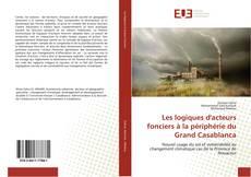 Les logiques d'acteurs fonciers à la périphérie du Grand Casablanca kitap kapağı