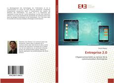 Bookcover of Entreprise 2.0