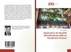 Bookcover of Application du Procédé Hémidihydrate HDH au Phosphate Tunisien
