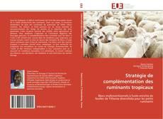 Couverture de Stratégie de complémentation des ruminants tropicaux