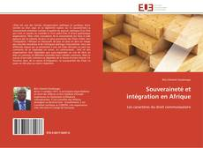 Copertina di Souveraineté et intégration en Afrique