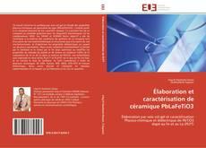 Copertina di Élaboration et caractérisation de céramique PbLaFeTiO3