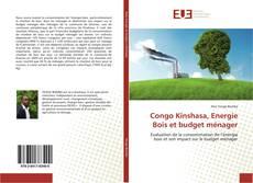 Capa do livro de Congo Kinshasa, Energie Bois et budget ménager