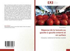 Bookcover of Réponse de la tomate au goutte à goutte enterré et en surface