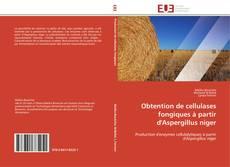 Bookcover of Obtention de cellulases fongiques à partir d'Aspergillus niger