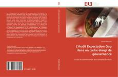 Bookcover of L'Audit Expectation Gap dans un cadre élargi de gouvernance