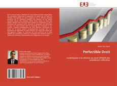 Bookcover of Perfectible Droit
