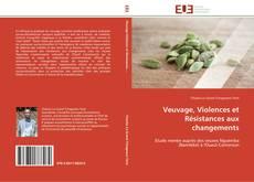 Couverture de Veuvage, Violences et Résistances aux changements