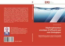 Buchcover von Déphosphatation anoxique d'effluents par voie biologique: