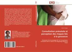 Portada del libro de Consultation prénatale et perception des risques liés à la grossesse